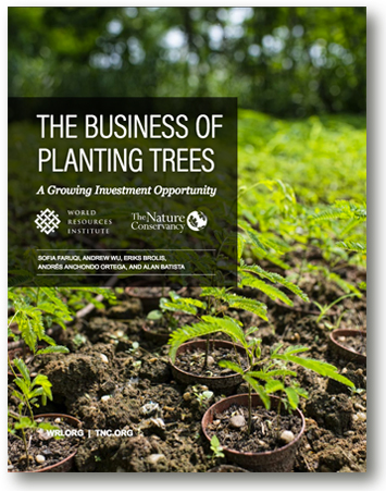 The Business of Planting Trees - GreenMoneyJournal.com